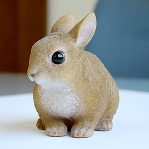 [MAGNET] PET BANK RABBIT